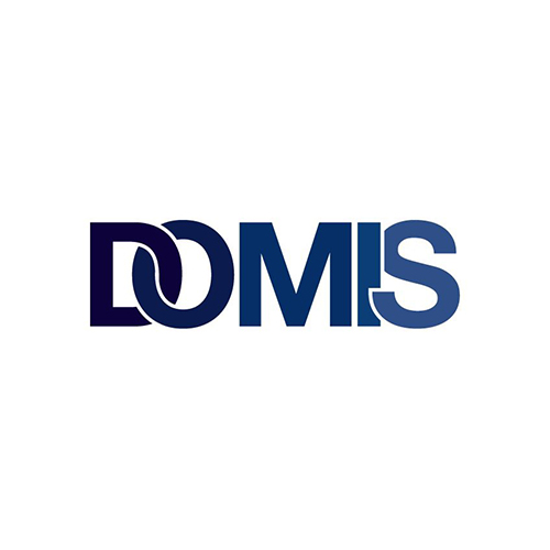 Domis Construction LTD